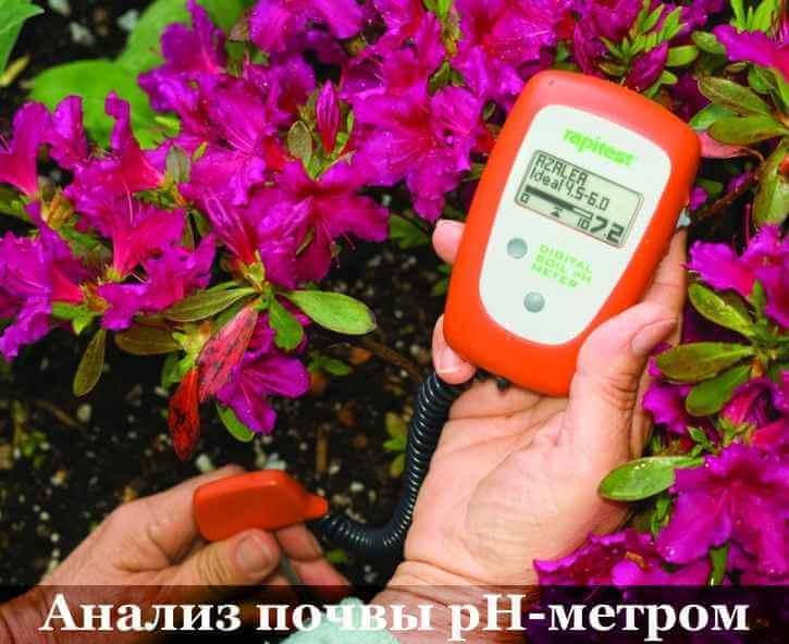как узнать кислая ли почва с помощью прибора