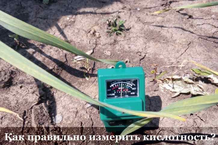 Как правильно пользоваться pH-метром для почвы