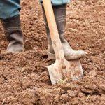 Как копать землю на даче и в какое время года это делать?