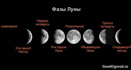 Фазы Луны: лунный календарь